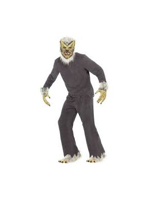 Werewolf Costume Grey Full Bodysuit Budget 31460