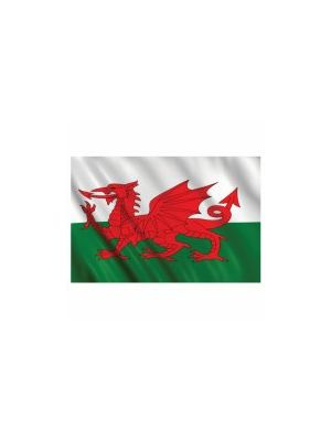Wales Welsh Flag 5ft x 3ft Rugby Football