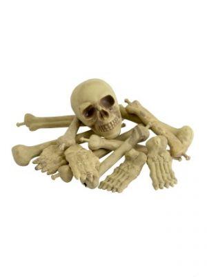Bag of Bones & Skull 36920