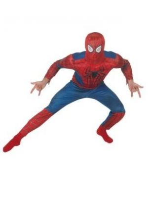 Spiderman 2 Deluxe Costume  887531