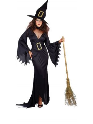 Wicked Witch Costume Wicked